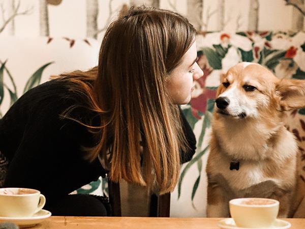 Pet-friendly restaurants in Pretoria
