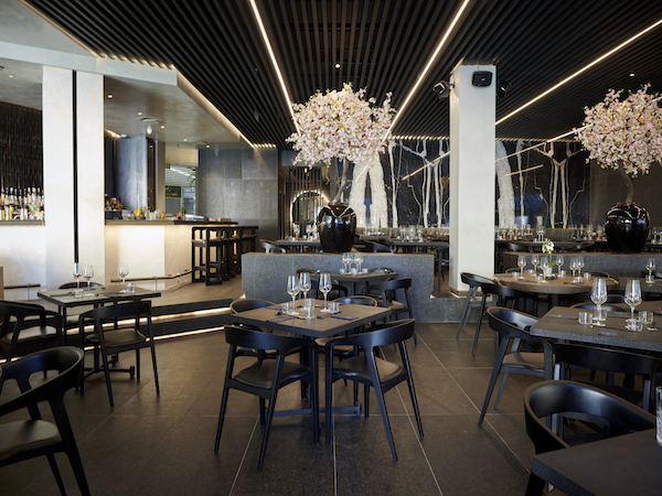 WATCH: First look at new Sandton restaurant TANG