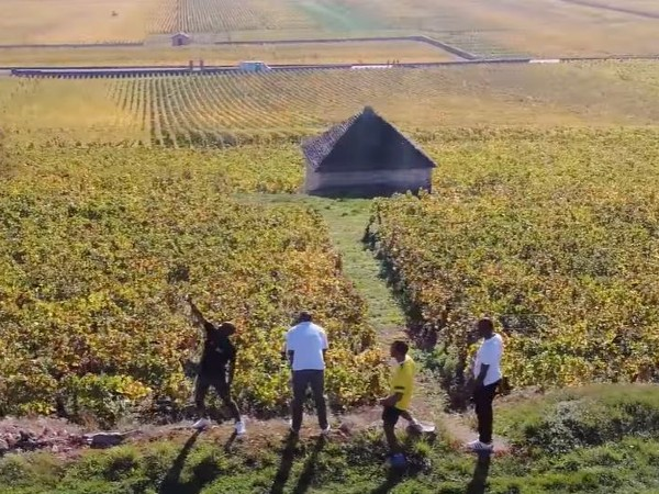 WATCH: 4 Zimbabwean refugees and their incredible  journey to becoming SA's top sommeliers